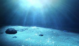 NECがBtoBEの海底ケーブルシステムを建設