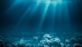 NEC、光海底ケーブルAsia Direct Cableの敷設開始
